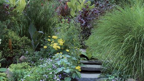 gardening design. A Low Maintenance Garden Design  FineGardening