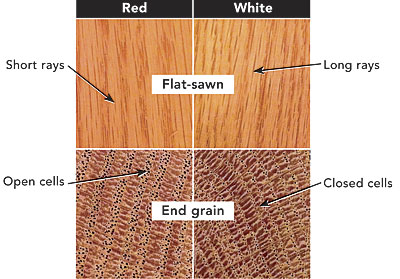 The Solution May Darken Red Oak Slightly, But It Will Turn White Oak A Deep  Indigo Color, Or Even Black.