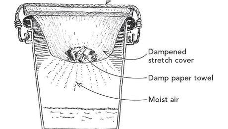 021257024-01-drywall-mud-preserver