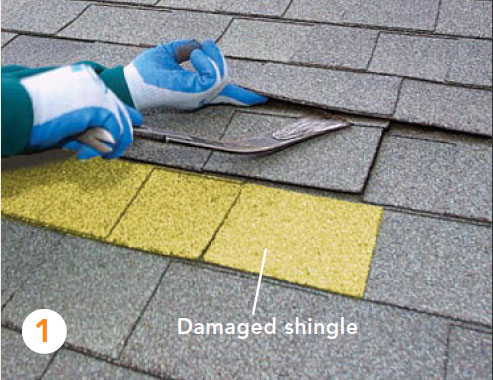 1 The First Step Is To Break The Bond Created By The Seal Down Strips Below  And On The Two Courses Above The Shingle You Want To Remove.