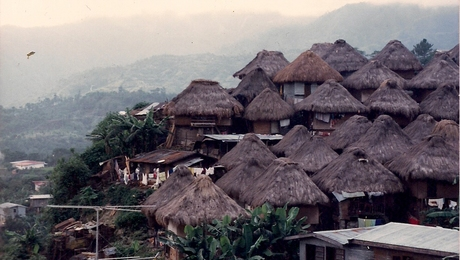 A type of home I know nothing about. Nipa Homes in the South Pacific.