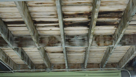 TimberSIL was installed on houses built by Brad Pitt's Make it Right foundation in New Orleans following Hurricane Katrina, but later replaced when it began showing signs of premature failure.