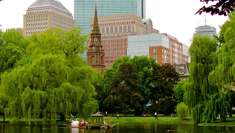 Many large, nonresidential buildings in Bostonearn high Energy Star scores. Offices, university dorms and public school buildings all have median scores that are significantly higher than the national median, according to a new report.