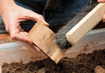 Spalt Your Own Lumber