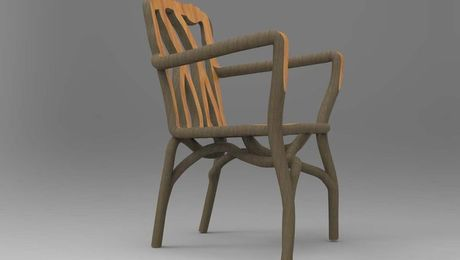 This chair was grown from a single willow tree.