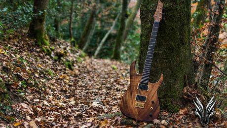 hufschmid-guitars