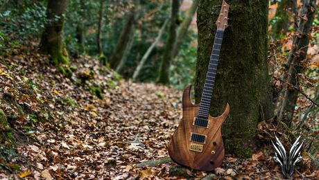 hufschmid-guitars