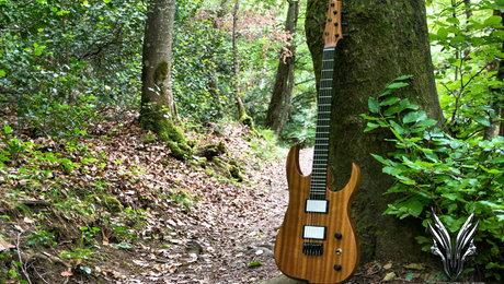 hufschmid_guitars-5