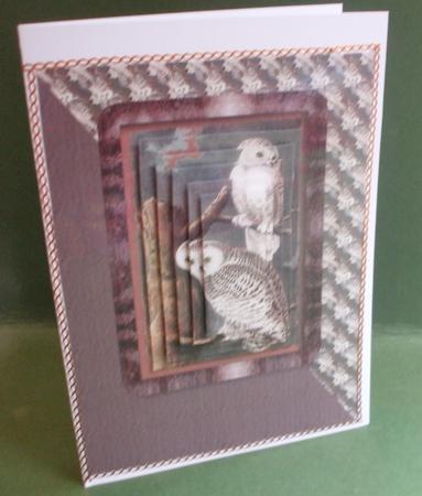Card Gallery - Snowy Owl