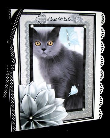 Card Gallery - Grey Kitten Birthday Decoupage Mini Kit
