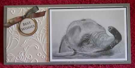 Card Gallery - Pencil elephant