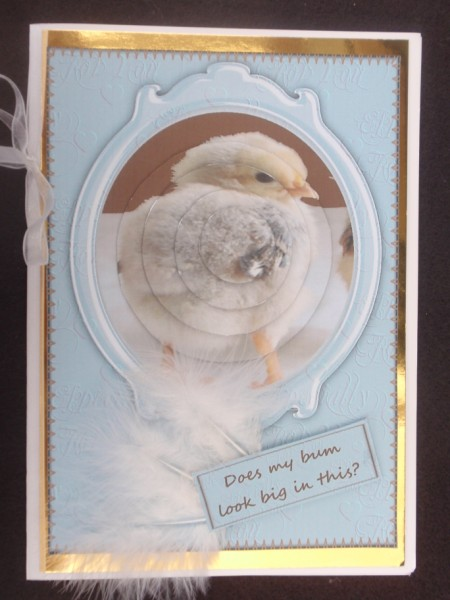 Cute Chick Does My Bum Look Big in This? in Card Gallery