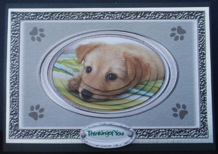 Cute Dog Face Get Well Pyramid in Card Gallery