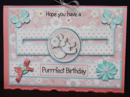 Have a Purrrfect Birthday Kitty Penny Slider in Card Gallery