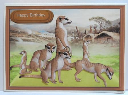 Meerkats on the lookout in Card Gallery