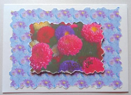 Asters - Set of 12 Backing Papers in Card Gallery