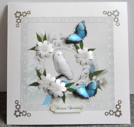 Snowy Owl in Card Gallery