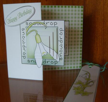 Snowdrop Fold Back Card with Pyramage in Card Gallery