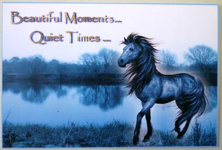 Beautiful Moments - Horse Toppers in Card Gallery