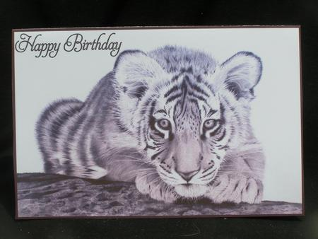 Card Gallery - Graphite Tiger