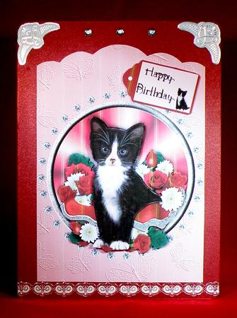 Card Gallery - Black and White Kitten Scallop Top Birthday