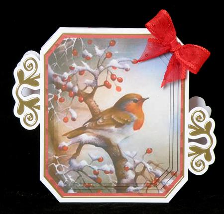Red Robin Fancy Emerald Decoupage Card Mini Kit in Card Gallery