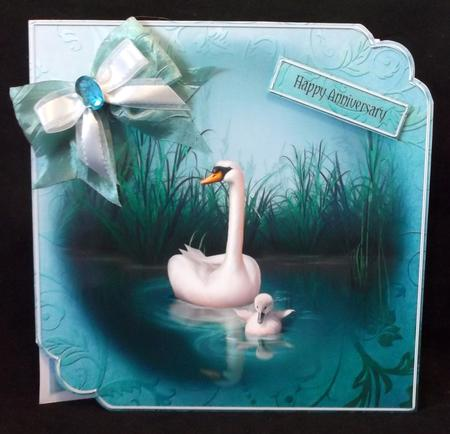 Swan Song - Stunning Scalloped 8x8 Quick Card in Card Gallery