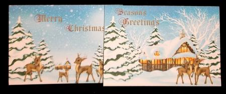 2 A6 Quick Reindeer Christmas Cards in Card Gallery
