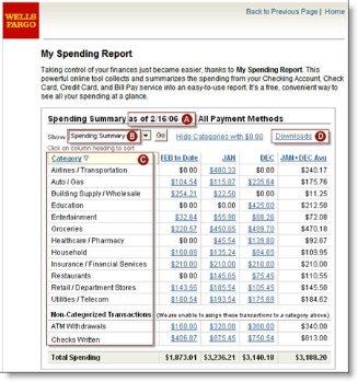 Wells Fargo My Spending Report CLICK TO ENLARGE