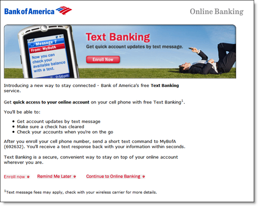 Bank of America interstitial 11 June 2010