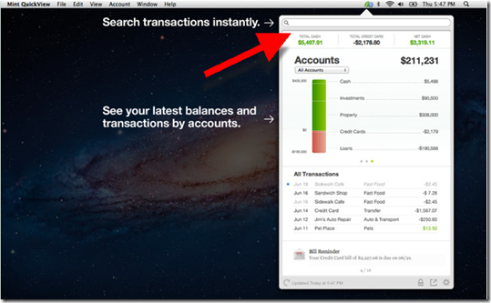 Mint QuickView features prominent transaction search