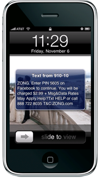 Text message from Zong authorize purchase Facebook credits