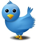 Thumbnail image for Twitter Bird.jpg