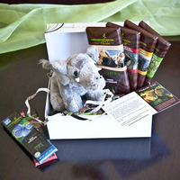 Elephant gift box image