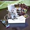 Elephant gift box