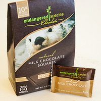 Otter milk chocolate image