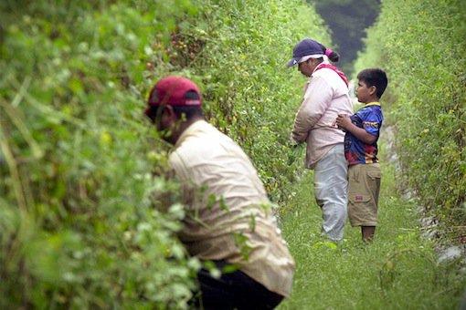 migrantworker