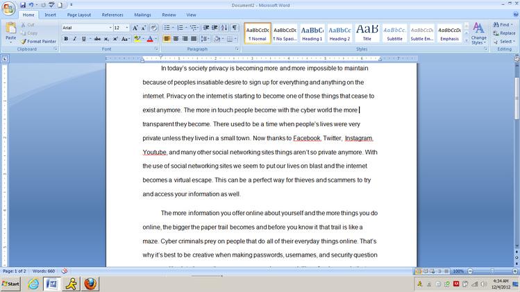 500 Page Essay