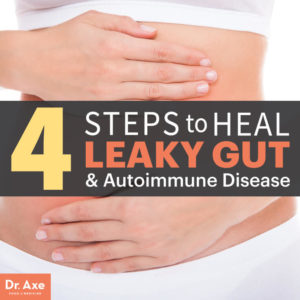 Leaky Gut Syndrome Test with Dr. Axe and his Site