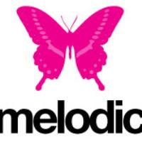 David Morales at Melodic: Main Image