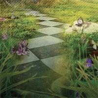 Beyond Wonderland: Main Image