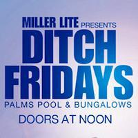 Ditch Fridays: Main Image