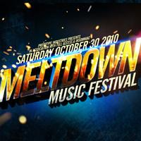 Meltdown Music Festival 2010: Main Image