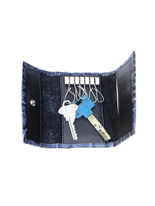 Blue Key Holder