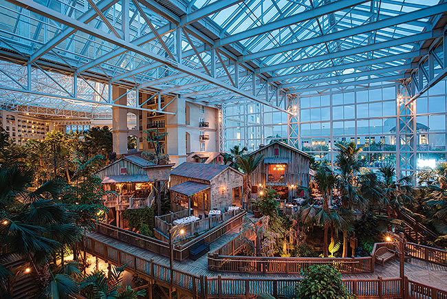 Everglades Atrium