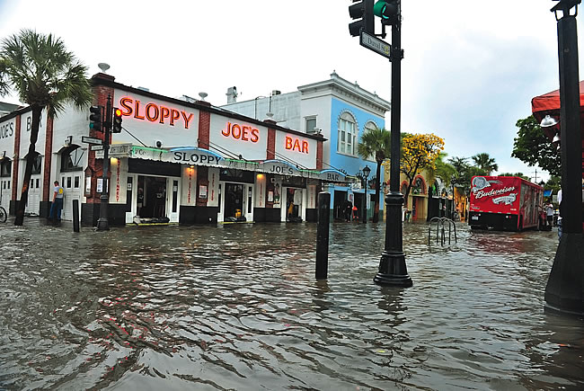 A Rising Concern: The impact of sea level rise on Florida