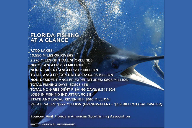 Florida Fishing at a glance
