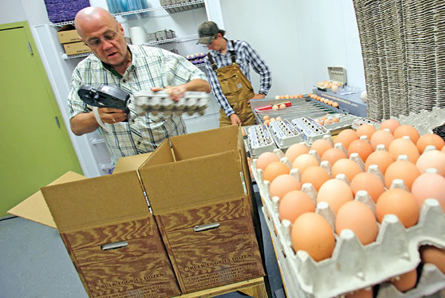 Small Orange County farmers capitalize on the eat-local movement