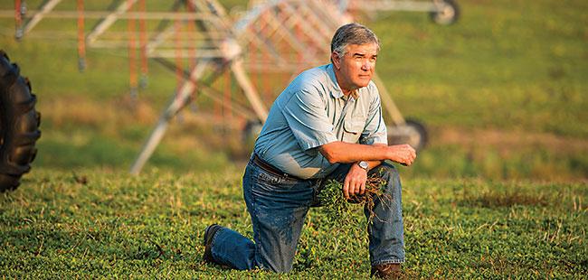 A pig in a poke: Former pig farmer Steve Basford savors a bittersweet victory
