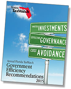 Government efficiency recommendations